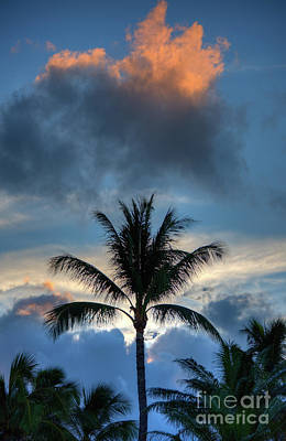 Photograph - Maui Sunrise Palms by Kelly Wade