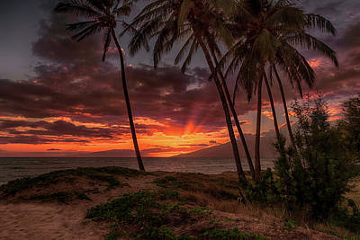Photograph - Maui Sunset 1 by Susan Rissi Tregoning