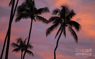 Photograph - Maui Sunset-signed-#3381 by J L Woody Wooden