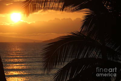 Photograph - Maui Sunset by Wilko Van de Kamp