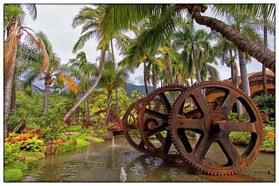 Photograph - Maui Tropical Plantation by Linda Tiepelman