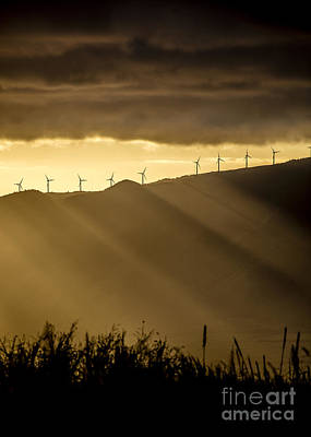 Photograph - Maui Wind Farm Sunset by Dustin K Ryan
