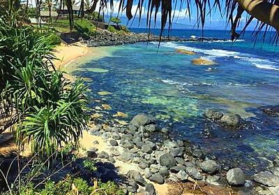 Photograph - Maui,hawai by Vilma Zurc