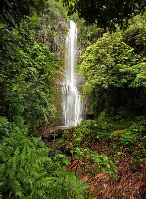 Photograph - Maui's Wailua Falls by Susan Rissi Tregoning
