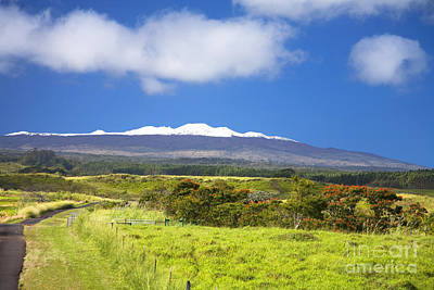 Mauna Kea Art Print by Peter French - Printscapes