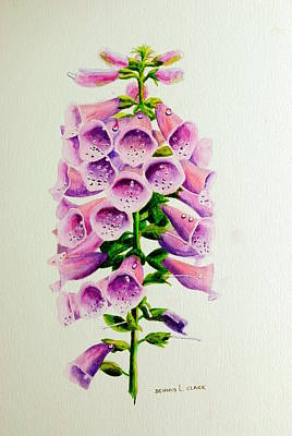 Painting - Mauve Foxgloves by Dennis Clark