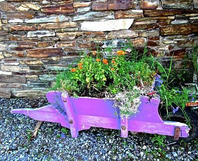 Photograph - Mauve Wheelbarrow Ith Flowers by Stephanie Moore