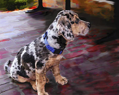 Dog Rescue Digital Art - Max by Kathi Ganong