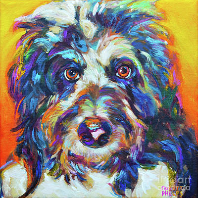 Painting - Max, The Aussiedoodle by Robert Phelps