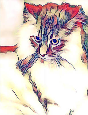 Digital Art - Max The Cat by Maggie Vlazny