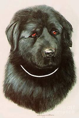 Maximillan And His Diamond Collar. Art Print by DiDi Higginbotham