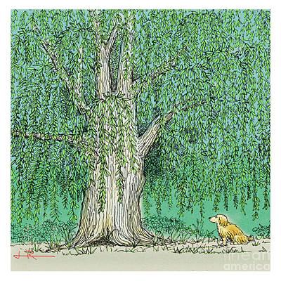 Maxwell's Willow #2 Original