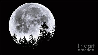 Photograph - May 4 Moon Set by Julia Hassett