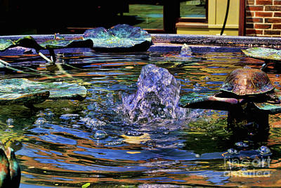 Photograph - May Bubbler by Mike Smale