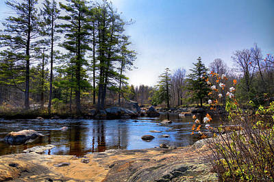 Photograph - May Flowers On The River by David Patterson