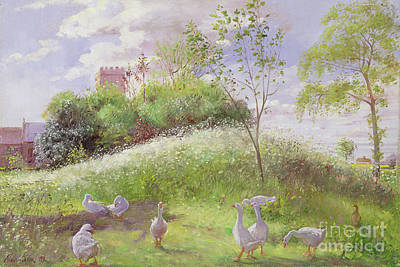 May Mount Art Print by Timothy Easton