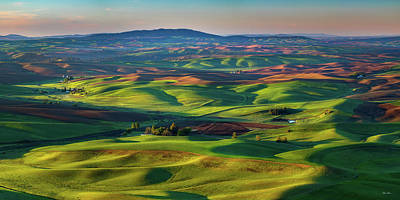 Photograph - May On The Palouse  by C Steele