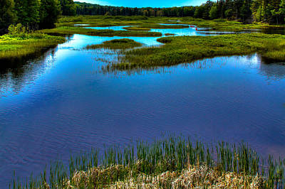 Canoe Photograph - May Reflections On The Moose River by David Patterson