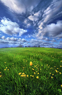 Photograph - May You Find Some Comfort Here by Phil Koch