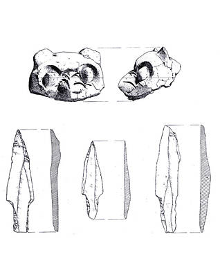 Drawing - Maya Cat Head And Stone Tools by Marcus England