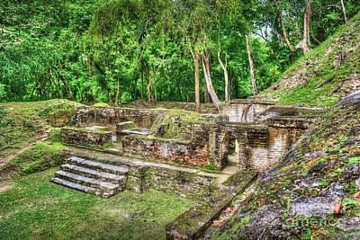 Photograph - Mayan Ruin Steps To Kings Chambers by David Zanzinger