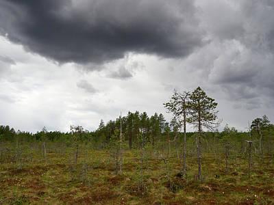 Photograph - Maybe A Bit Of Rain Coming. Morass. by Jouko Lehto