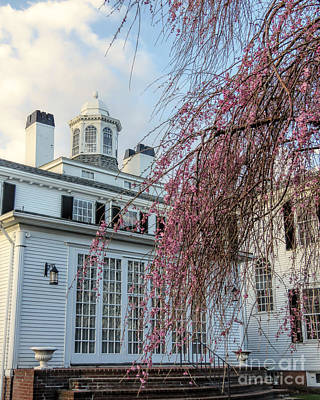 Photograph - Mayflower Society House Cupola  by Janice Drew