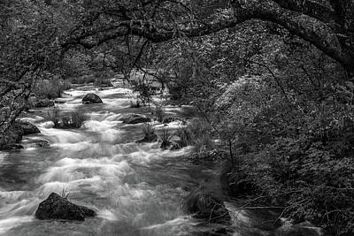Photograph - Mcarthur-burney Falls Creek Black And White by Bill Gallagher