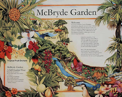 Photograph - Mcbryde Garden by Joe  Palermo