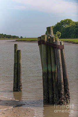 Photograph - Mcclellanville Pilings by Dale Powell