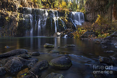 Photograph - Mccloud Middle Falls by Randy Wood