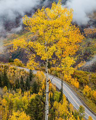 Unique Photograph - Mcclure Pass by Gary Migues