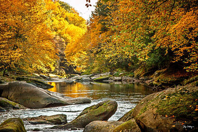 Photograph - Mcconnell's Mill State Park by Skip Tribby
