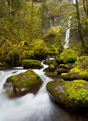 Elowah Photograph - Mccord Creek Below Elowah Falls by Thorsten Scheuermann