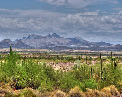 Photograph - $250 -16x20 Canvas - Mcdowell Mountains 2830- 072911-3  by Tam Ryan