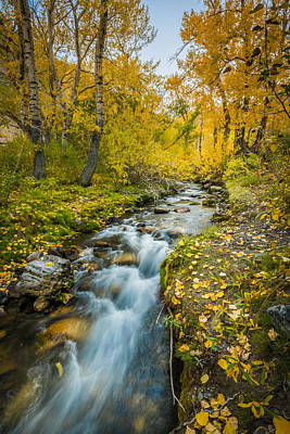 Photograph - Mcgee Creek by Alexander Kunz