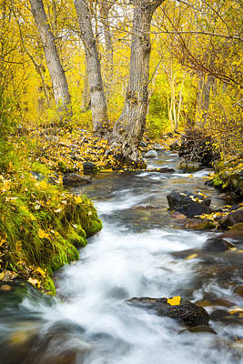 Photograph - Mcgee Creek In The Fall by Joe Doherty