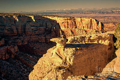 Photograph - Mcinnis Canyons by Steven Parker
