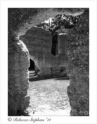 Oyster Photograph - Mcintosh Sugar Mill Tabby Ruins  by Rebecca Stephens