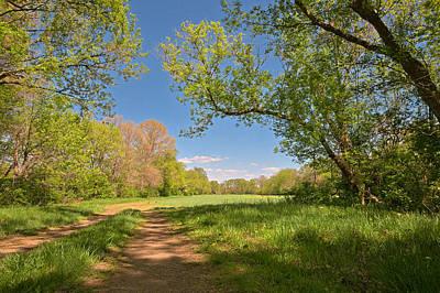 Photograph - Mckee-beshers Trail by Nicolas Raymond
