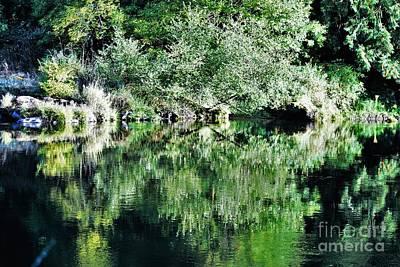 Photograph - Mckenize River Scene by Merle Grenz