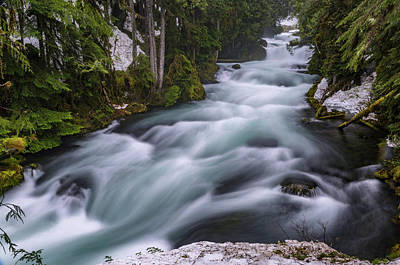 Photograph - Mckenzie River by Cat Connor