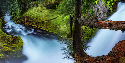 Art Print featuring the photograph Mckenzie River From Sahalie Falls by Cat Connor