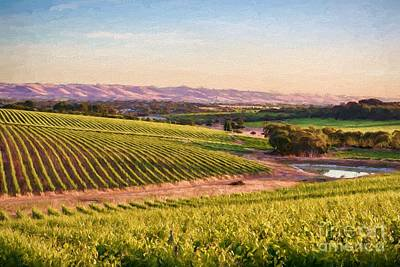 Photograph - Mclaren Vale Magic Ed by Ray Warren