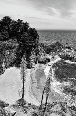 Photograph - Mcway Cove Black And White by Judy Vincent