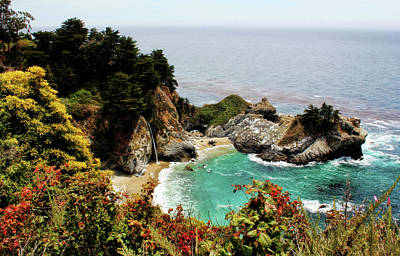 Mcway Falls 2 Art Print by Judy Vincent