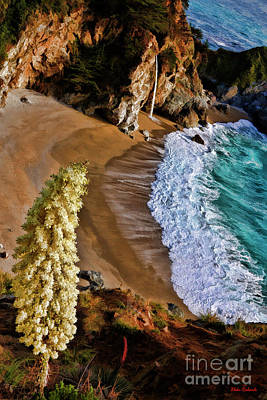 Photograph - Mcway Falls Flower by Blake Richards