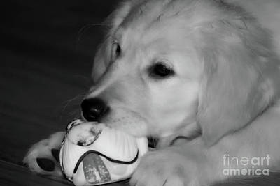 Photograph - Me And My Ball by Cathy Beharriell