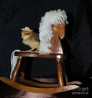 Photograph - Me And My Rocking Horse by Donna Brown
