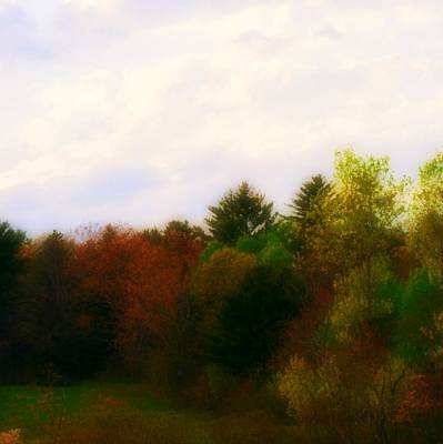 Meadow At Dusk Art Print